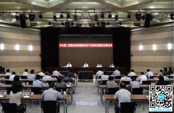 中央第二巡视组向国家知识产权局党组反